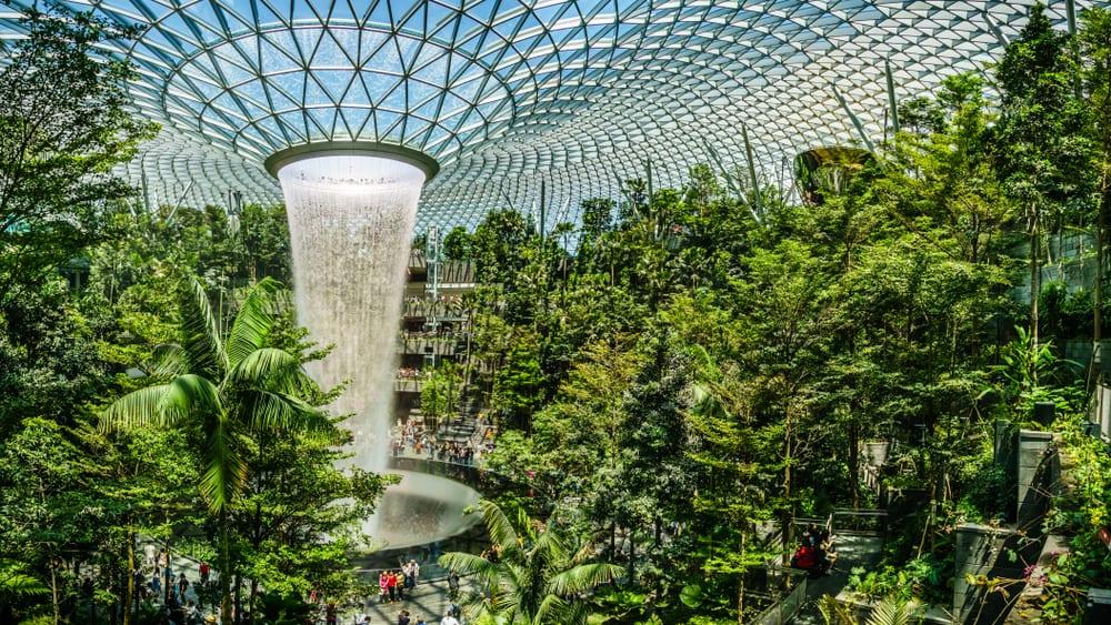Cara Supaya Transit di Changi Airport Singapura Jadi Menyenangkan