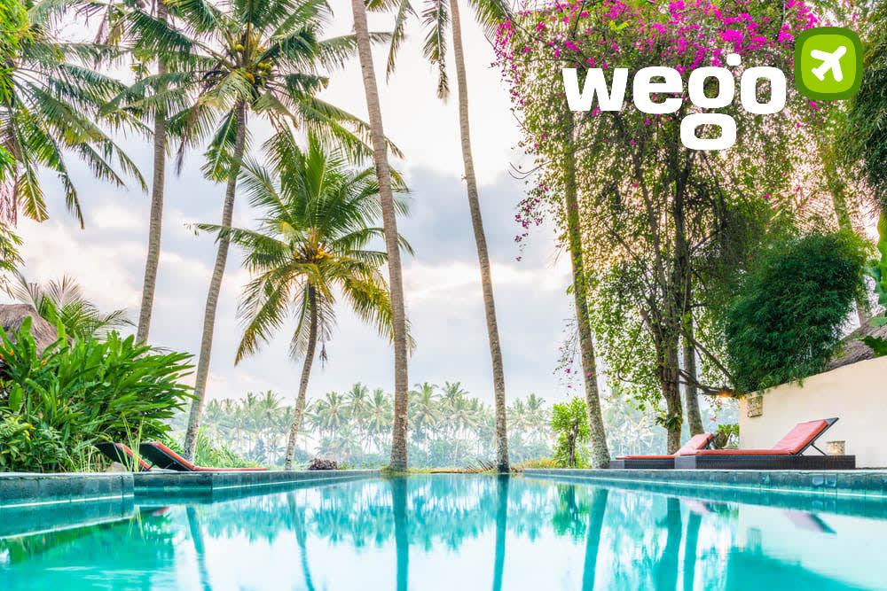 Rekomendasi Penginapan Bagus di Bali 750 Ribu Wego Indonesia