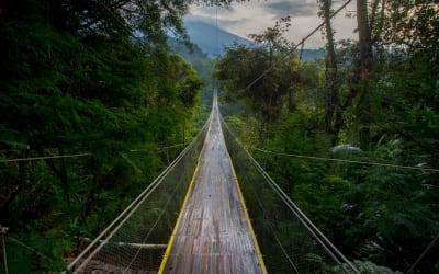 Melihat Jembatan Gantung Terpanjang Se-Indonesia di Situ Gunung