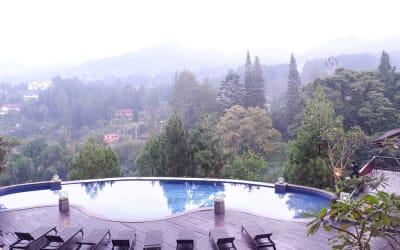 Kangen Menghirup Udara Sejuk Puncak? Ini Rekomendasi Villa dan Hotel yang Bagus tapi Murah di Sana!