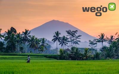 Itinerary Liburan Hemat di Ubud Bali