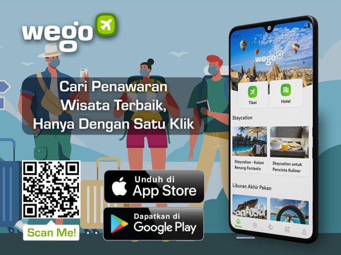Download Wego